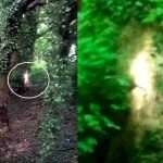 Bizarre 'Ghost Boy' Captured By a Pensioner On Her iPhone