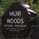 Haunted Muir Woods National Monument